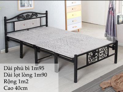 Giường sắt gấp 1m2 màu đen